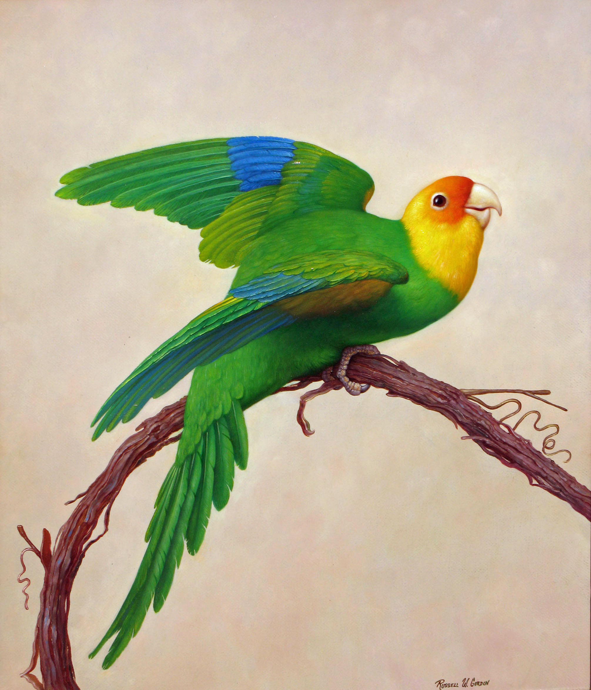 Beautiful Birds Paintings On Canvas